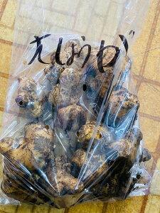 種生姜 大生姜 生姜の種 種 大きい 種しょうが 種ショウガ 種子 1kg 千葉県産