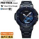 カシオ プロトレック CASIO PRO TREK 世界限定1000個 スマートアウトドアウォッチ Smart Outdoor Watch ブラック 腕時計 メンズ WSD-F30SC-BK(WSDF30SCBK) サファイアガラス フール度コンポジットバンド