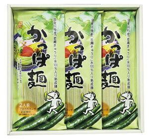 かっぱ麺 きゅうりの乾麺 3袋入り(6食分)須賀川特産のきゅうりを使った乾麺 かっぱ麺詰め合わせ