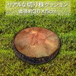 クッション丸切り株リアル座布団直径36cm厚み5cm送料無料フロアークッション円型