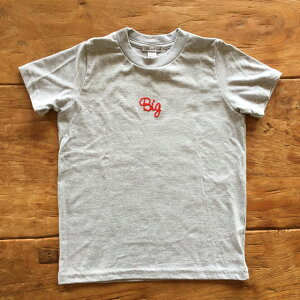 Big刺繍Tシャツ