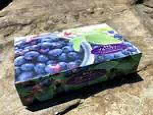 贈答用 ブルーベリー 完熟冷凍 ギフト1kg 東北関東送料無料 クール便 福島県産みうら農園