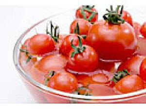 敬老の日 お中元 東北関東送料無料 山形県飯豊町産糖度8〜10の甘〜い朝採りミニトマト3kgたっぷり食べれる