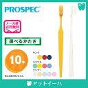 (メール便送料無料)プロスペック PROSPEC 歯ブラシ ヤング(10本)