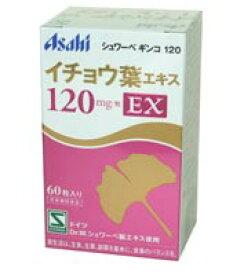 【あす楽対応】 シュワーベ ギンコ 120EX 60粒 【送料無料】