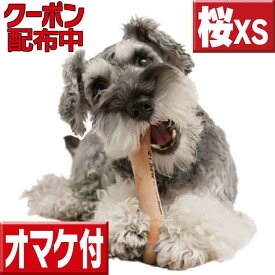 愛犬のストレス発散に chew for more trees xsサイズ桜の木 犬 おもちゃ 木 犬の歯固め チュウ・フォー・モア・トゥリーズ 犬のおもちゃ ボーン 犬 しつけ 仔犬 甘噛み 犬 おもちゃ ボーン