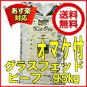 【割引クーポン配布中】オマケ付♪送料無料!キアオラ ビーフ9.5kg【kiaora】【kiaora ビーフ】【Kia Ora】【キアオ…