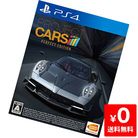 PS4 プレステ4 PROJECT CARS PERFECT EDITION - PS4 ソフト ケースあり PlayStation4 SONY ソニー 中古 4573173304191 送料無料 【中古】