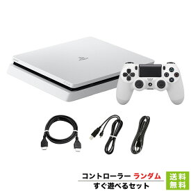 PS4 グレイシャー・ホワイト 500GB (CUH-2100AB02) 本体 すぐ遊べるセット PlayStation4 SONY ソニー 【中古】