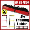 GronG トレーニングラダー アジリティラダー 5m プレート 9枚 イエロー レッド 収納袋