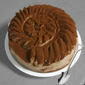 おもしろ ケーキ アンモナイト 5号 子供 ギフト 記念日 誕生日 お菓子 バースデーケーキ 立体ケーキ パーティ 送料無料
