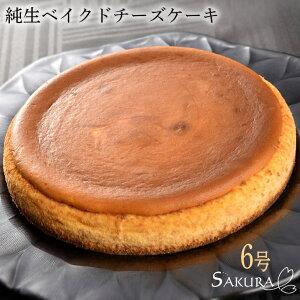 純生 ベイクド チーズケーキ 6号 21cm ギフト箱付 プレゼント お菓子【SAKURA】【送料無料】(gift)