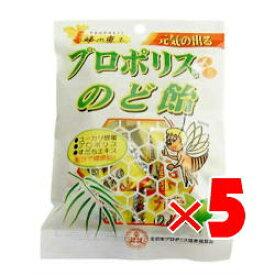 蜂の恵み プロポリスのど飴 100g×5袋セット