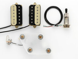 "DiMarzio Pre-wired Pickup Set for Les Paul Type ""Modern Metal set (GG2101A3BC)"" 【安心の正規輸入品】"
