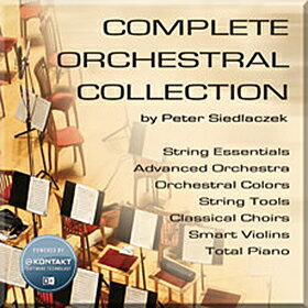 ●BEST SERVICE COMPLETE ORCHESTRAL COLLECTION 【D2Rオンライン納品専用ソフトウェア】 ※代金引換不可