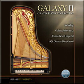 ●BEST SERVICE GALAXY II GRAND PIANO 【D2Rオンライン納品専用ソフトウェア】 ※代金引換不可