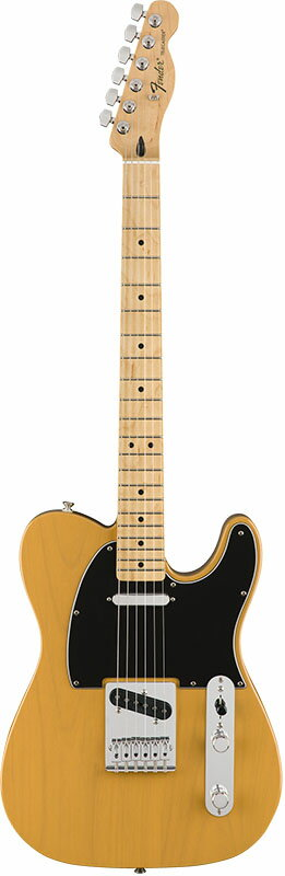 Fender Standard Telecaster (Butterscotch Blonde/Maple) [Made In Mexico] 【ikbp5】