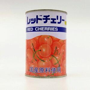 天狗缶詰 レッドチェリー さくらんぼ・シラップづけ(ライト) 枝付き 国産原料使用 M 中粒 4号缶