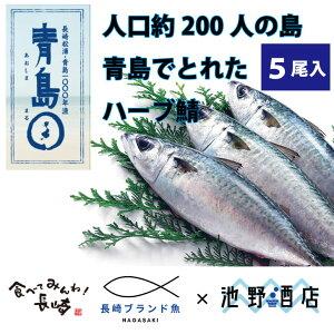 ハーブ鯖 500g×5尾入り 長崎県産 養殖ハーブ鯖 獲れたて新鮮 おすすめ人気通販 産直 高級ギフト【送料無料】長崎ブランド魚