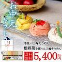 夏野菜を使った三輪素麺(トマト・オクラ・カボチャ)【ギフト/そうめん】【野菜そうめん】【そうめん 彩り詰め合わせ】