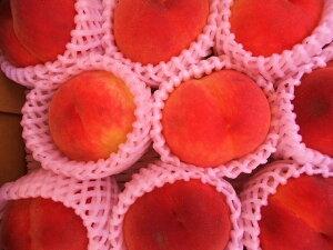 7月下旬より9月まで発送!数に限りがあります!【予約販売】糖度14程度桃とネクタリンの美味しさいっぱい!長野産 ワッサークイーン 3-4玉 約1kg 桃箱入り:ただし暑いとき・地域によ
