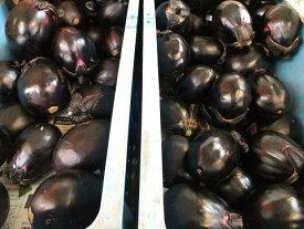 8月から発送!朝採り新鮮!一味違います!寒暖差の中で育った!長野産 丸ナス(丸茄子) 30個