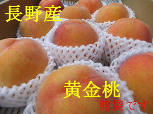 【送料無料】数に限りがあります!【8月半ばより発送!】糖度12-14程度桃の味わいとマンゴのような味わいで、果肉は黄色です!長野産 黄金桃 3個〜4個 約1kg 果物箱入り:ただし暑い