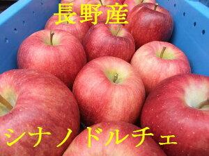 高級リンゴです!【送料無料】【予約特別価格】【数量限定】【贈答用】大切な方へ!シナノドルチェ 約5k:ただし暑いとき・地域によりクール代210円加算されます