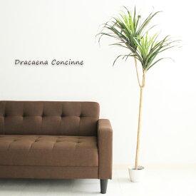人工観葉植物 H148 DRACAENA ドラセナ コンシンネ インテリア 大型 造花 フェイクグリーン 観葉植物 インテリアグリーン グリーン ギフト アジアンテイスト 目隠し 仕切り 開店祝い 新築祝い プレゼント 幅80 ポット おしゃれ 送料無料