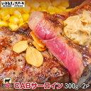 【肉の日SALE】CABサーロインステーキ300g×2枚セット(300gサーロイン2枚、ステーキソース2袋、)牛肉 【ギフト お中…