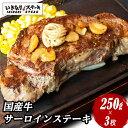 【肉の日SALE】国産牛サーロインステーキ250g×3枚 セット (※通常価格10,884円)牛肉 お肉 肉 いきなり!ステーキ …