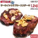 【肉の日セール】いきなりステーキ ウルグアイ産 サーロインステーキ200g・リブロースステーキ200g 各3パック(計6パ…