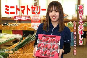 『送料無料』全国最大級の生産を行っている。熊本県玉名のミニトマトをゼリーにしてみました。140gの内容量を9個箱入りで送ります。