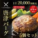 ハンバーグ ギフト 【唐津バーグ 5個】肉汁たっぷり お試しセット 送料無料 冷凍 でお届けに上がります。いきや食品 …