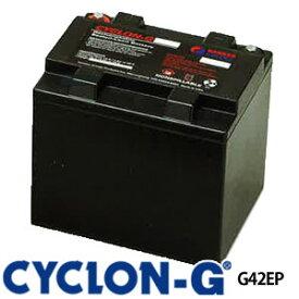 サイクロンG G42EP ディープサイクルバッテリー エナーシス製 (ホーカーバッテリー) 蓄電池 サイクルサービス バッテリー CYCLON-G BATTERY CYCLONG サイクロンジー オフグリット 独立電源 バッテリーカー UPS 観測装置 医療 非常灯 工場 低温 高温 極地