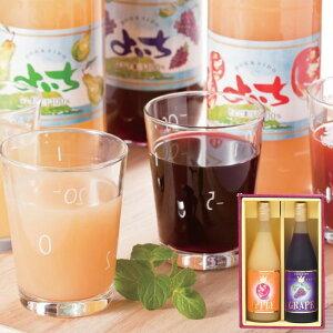 フルーツジュース セット H-30 りんご ぶどう 送料無料 果物 新鮮果実 贈り物 お取り寄せ ご当地 林檎 葡萄 果汁100% ストレート ジュース 北海道 余市 よいち北王よいち