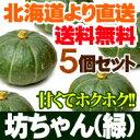 坊ちゃんかぼちゃ(緑)5個セット 北海道産 送料無料 贈り物 内祝い お返し ギフト 秋の味覚
