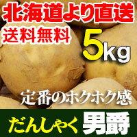 ジャガイモ 北海道産 男爵 だんしゃくいも 5kg贈り物 内祝 お返し ギフトあげいも フライドポテト等 おいもを使ったおやつに 送料無料 バーベキュー BBQ