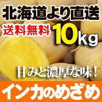 【新じゃが】インカのめざめ 10kgセット 北海道産 煮崩れ少なく甘みのある小ぶりなじゃがいも