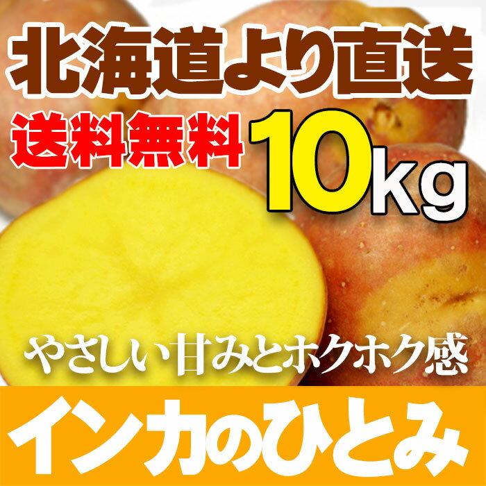 インカのひとみ10kg じゃがいも 北海道産贈り物 内祝 お返し ギフト 送料無料 バーベキュー BBQ