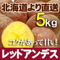 じゃがいも 北海道産 レッドアンデス5kg 送料無料 贈り物 内祝 お返し ギフト 秋の味覚