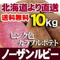 ノーザンルビー 10kg じゃがいも 北海道産 贈り物 内祝 お返し ギフト 送料無料 バーベキュー BBQ
