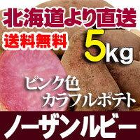 ノーザンルビー 5kg じゃがいも 北海道産 贈り物 内祝 お返し ギフト 送料無料 バーベキュー BBQ