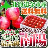 南陽2Lサイズ500g送料無料超高級品種北海道産果物フルーツ贈り物内祝いお返しギフト