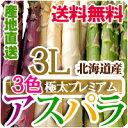 【食フェス10%オフクーポン対象商品!】北海道産アスパラ3色(グリーンアスパラ・ホワイトアスパラ・紫アスパラ)極太3L 送料無料 白いアスパラ 春の野菜 春野菜