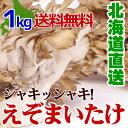 舞茸 高級 えぞまいたけ1kg(2株) 北海道産 マイタケお中元 贈り物 内祝い お返し ギフト 送料無料 バーベキュー BBQビタミンD