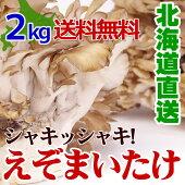 きのこギフト【蝦夷舞茸(えぞまいたけ)2kg(3〜4株)】北海道産極めて天然環境に近い状態で生産しています。