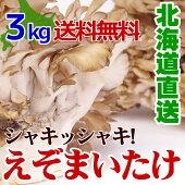 きのこギフト【蝦夷舞茸(えぞまいたけ)3kg(5〜6株)北海道産きのこ送料無料