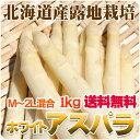 露地物 ホワイトアスパラ 北海道産 M〜2Lサイズ混合 露地 アスパラガス 送料無料 白いアスパラ 春の野菜 春野菜 バーベキュー BBQ