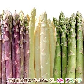 アスパラガス 北海道産 アスパラ 3色 ( グリーン ホワイト パープル )2L 合計1kg 送料無料